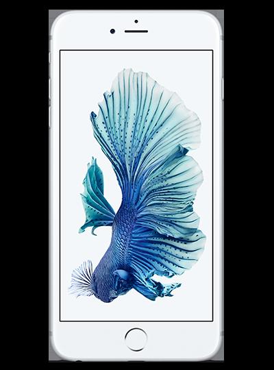 IPHONE 6S PLUS - 128GO Apple Smartphones - Hubside.Store- image 1