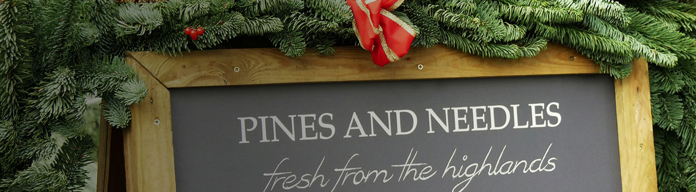 corporate christmas services pines and needles