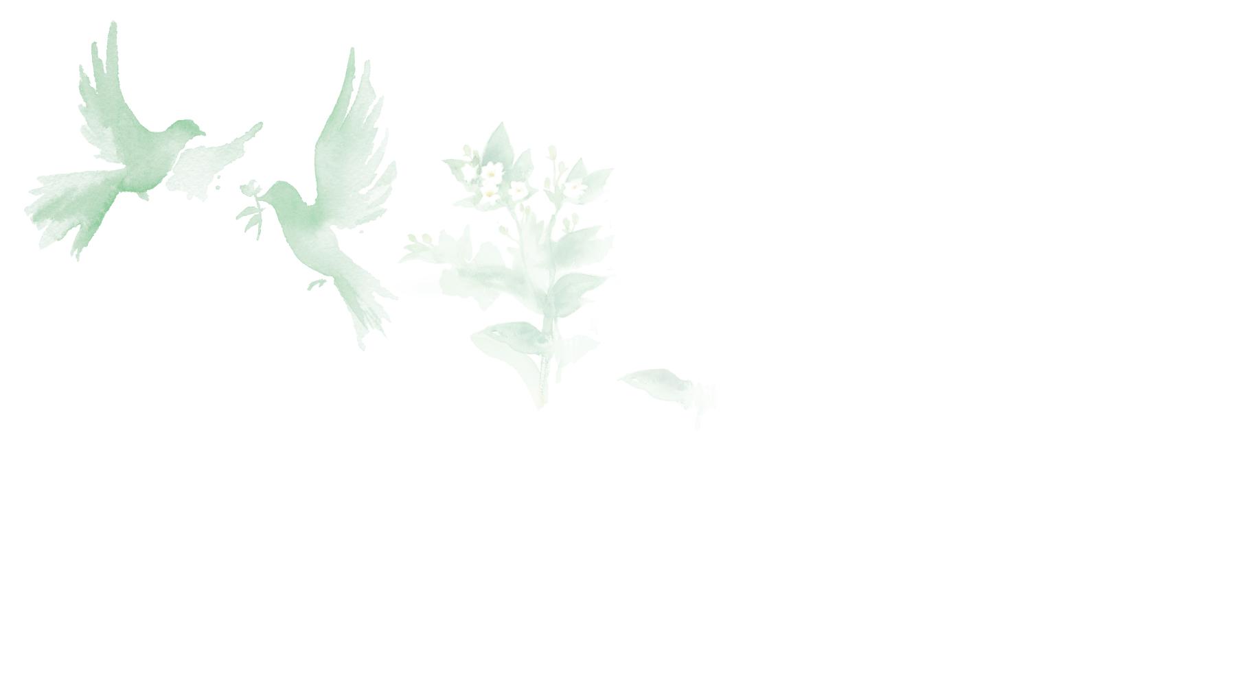 Floral Jasmine