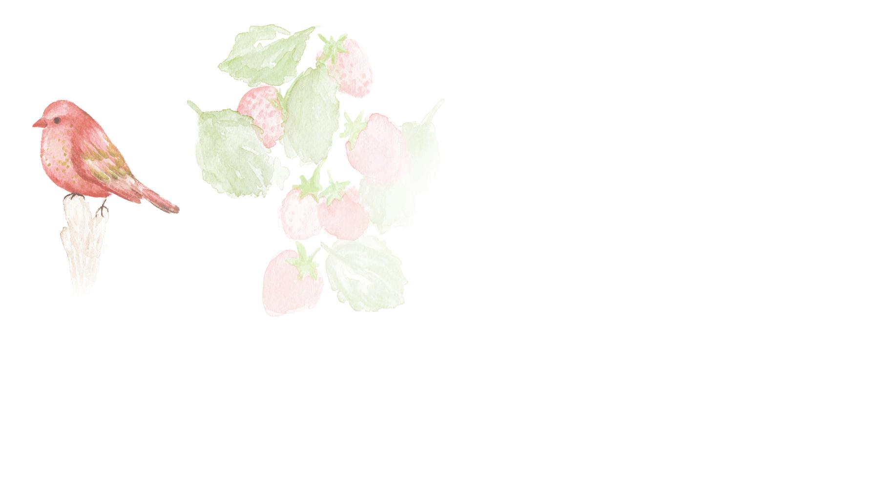Organic Wild Strawberry