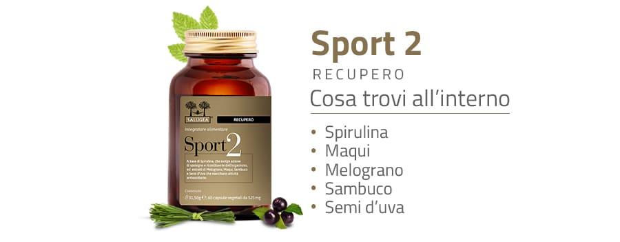 Ingredienti di Sport 2 Recupero Salugea, integratore per il recupero muscolare