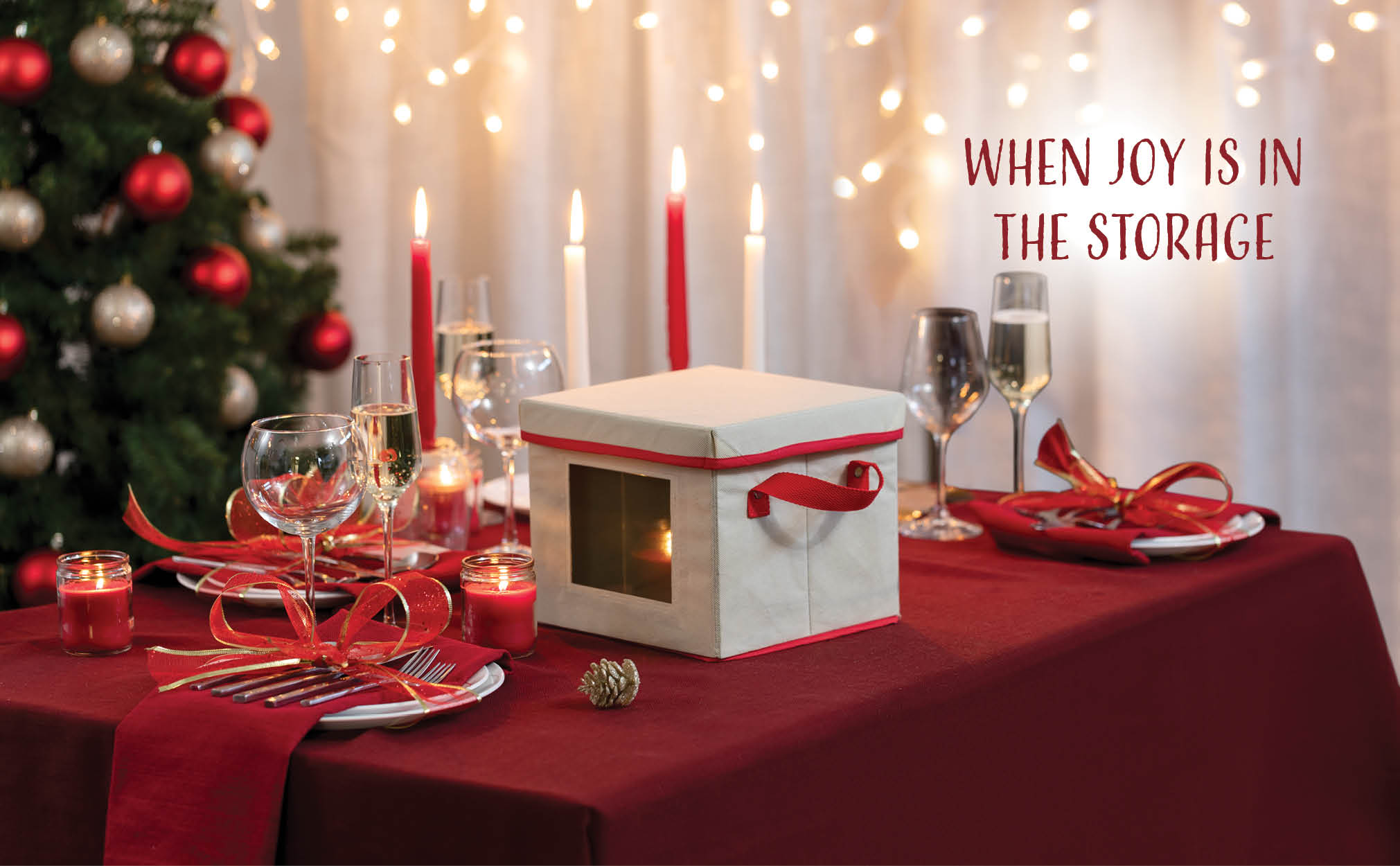 Holiday Soup Plate Box for Dinnerware Storage with Felt Dividers for 12, Non-Woven Ivory and Red